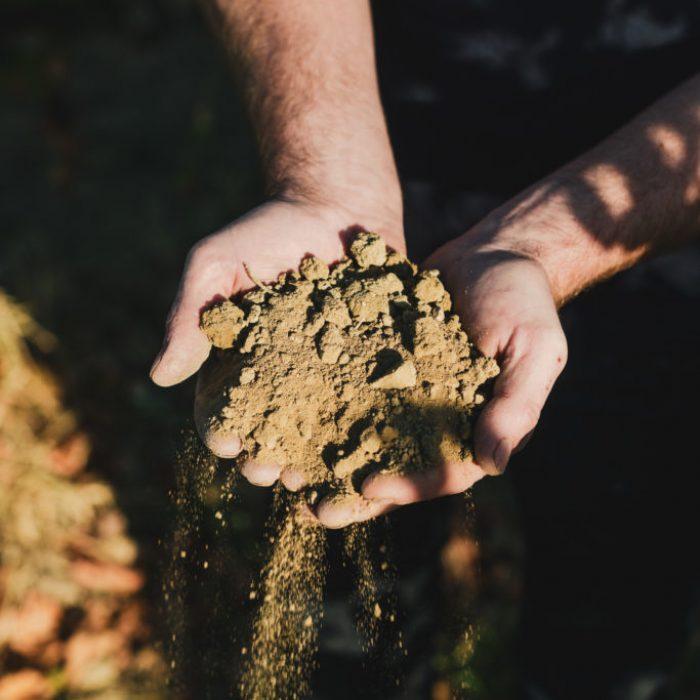 Terre, terroir, millésime, savoir-faire, travail de la terre, labour, labourer, charrue, sol, biodiversity, bio diversité, nature, environnement, naturel,